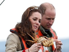 The Duke and Duchess of Cambridge examine crabs that have been fished from the coast of British Columbia as part of their Royal tour