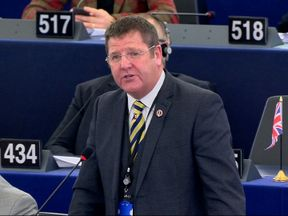 UKIP MEP Mike Hookem in the European Parliament