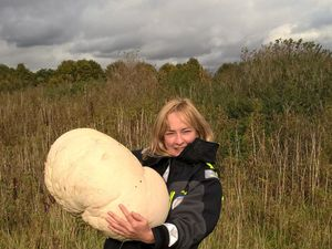 Ranger dines out after finding giant 10kg mushroom in Falkirk