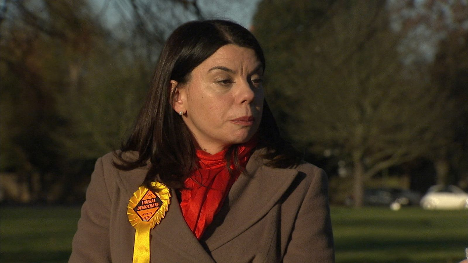 Sarah Olney says people are concerned about Brexit