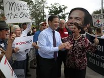 Marco Rubio lost out to Donald Trump in the Republican primaries but looks likely to retain his Senate seat