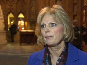 Arrest after Jo Cox Twitter threat to MP Anna Soubry
