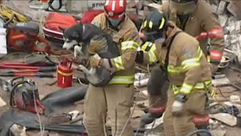 Rescue workers pulled a dog from the rubble of a building