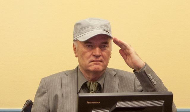 Bosnia war leader Ratko Mladic's genocide trial hears final arguments