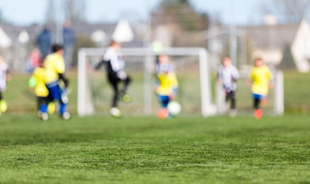 FA urged to help pay for checks on grassroots football volunteers