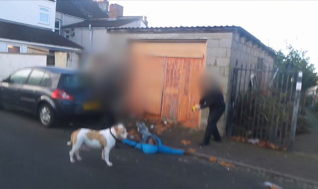 Two officers probed after police Taser their own race relations adviser in Bristol