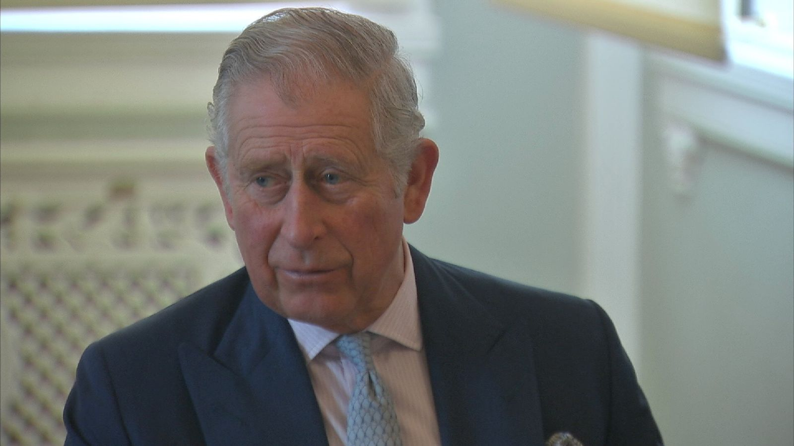 Prince Charles hopes Sky's Ocean Rescue campaign can  win hearts and minds
