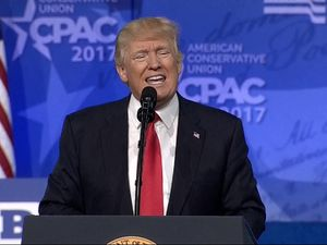 Donald Trump: Border wall building starts 'soon' and is 'ahead of schedule'