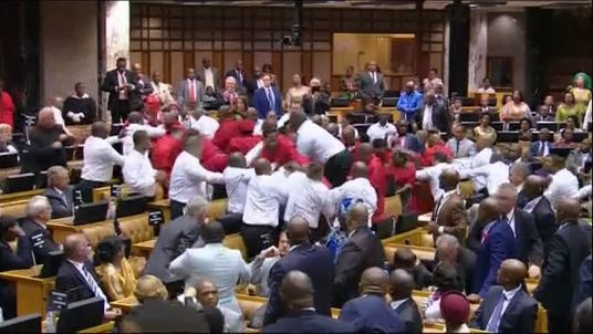 MPs fight in South African court