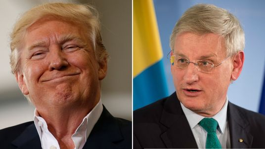 Of the President, Mr Bildt asked: 'What has he been smoking?'
