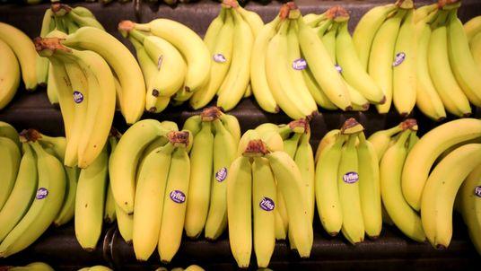 Bananas on sale in a Morrisons supermarket