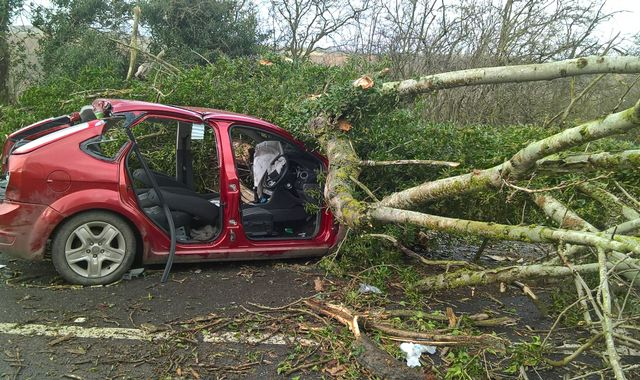 Storm Doris: Pensioner dies three days after tree fell on car