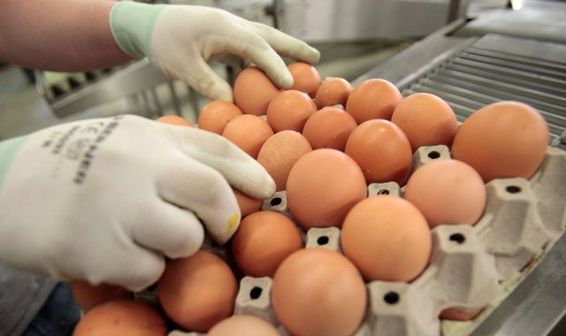 Millions of eggs on UK shelves to lose free range status