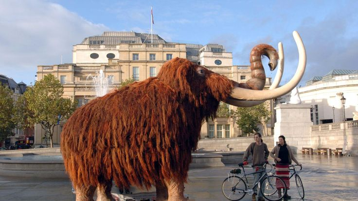A life-size woolly mammoth sits in Trafalgar Square in central London