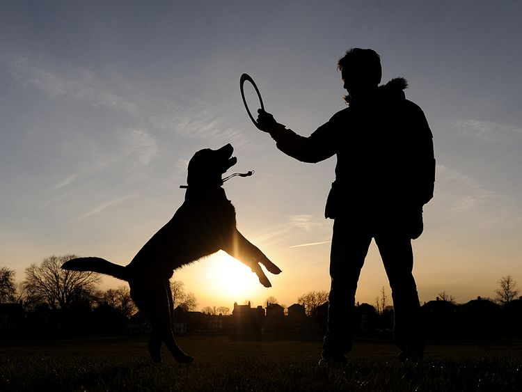 Dog walkers and joggers could be asked to help volunteer to maintain parks
