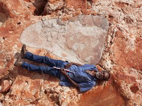 Aboriginal elder and Goolarabooloo Law Boss Richard Hunter alongside a 1.75m sauropod dinosaur track