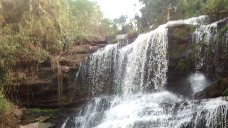 20 students killed by tree at waterfall bathing pool