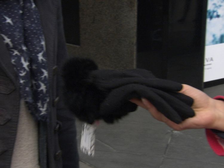 These House of Fraser gloves were found to be made of real fur consistent with rabbit