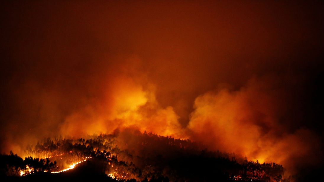 Raging forest fire kills 61 in Portugal; many as they fled