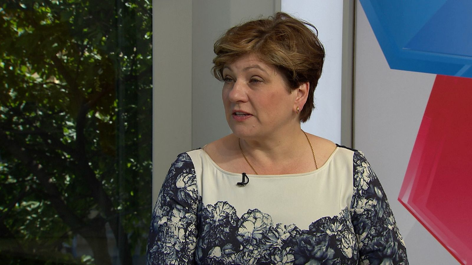 Shadow foreign secretary Emily Thornberry says Theresa May is 'squatting' in Downing Street