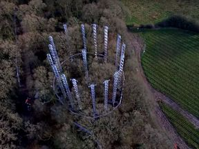 The woodland within the ring structures is immersed in high levels of CO2