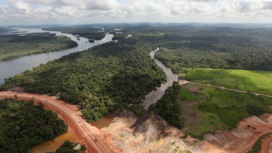 Deforestation to make way for dams and development has destroyed thousands of kilometres of Brazilian forest