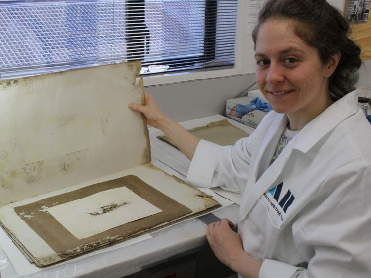 The painting by Dr Edward Wilson found 118 years later by scientists in Antarctica