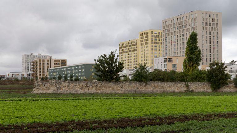 Tower blocks in a suburb of Paris