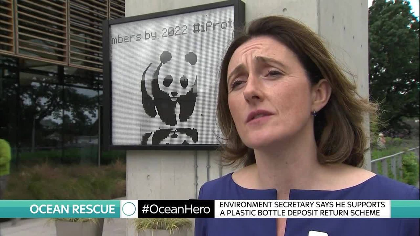 The chief executive of WWF calls for action to product sea creatures from plastic