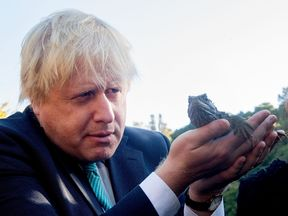 Boris Johnson holds a Tuatara lizard during a trip to an ecosanctuary in New Zealand