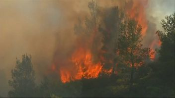 Fire spreads through French Riviera
