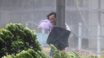 A man holds onto a lamp post against strong wind as Typhoon Hato hits Hong Kong