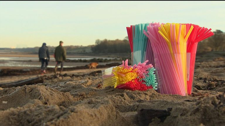 Plastic straws could be taxed in Scotland to reduce ocean pollution