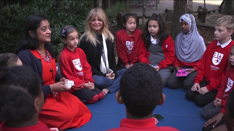 Superstar Goldie Hawn has spent years developing a program to aid childrens' mental health