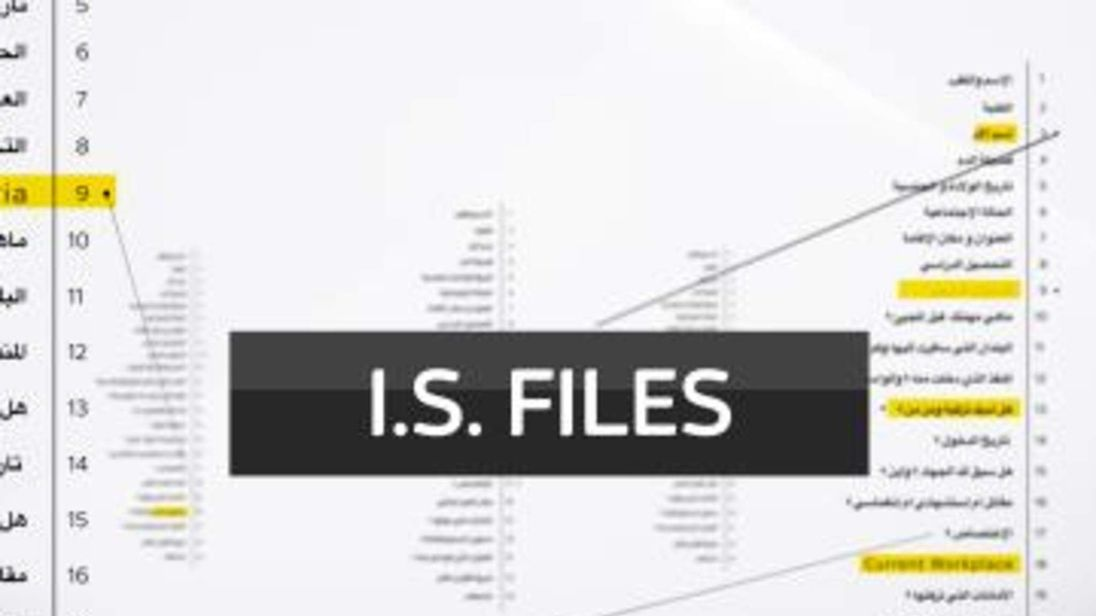 IS Files promo image