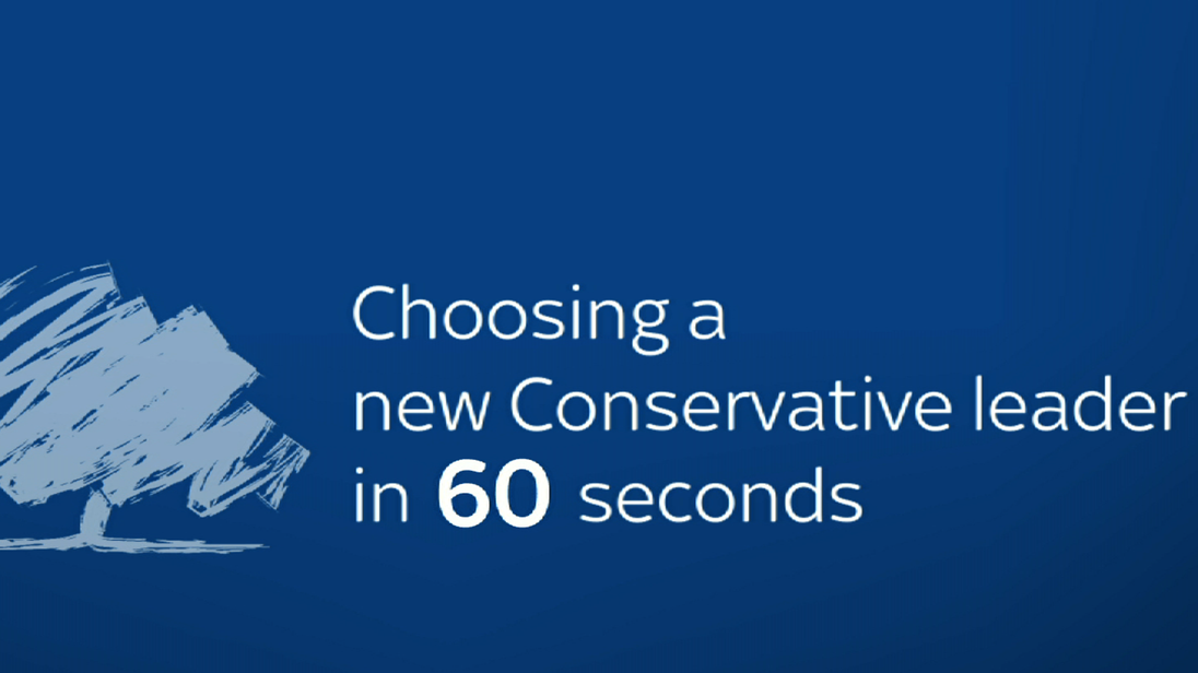 Conservative leadership rules screengrab