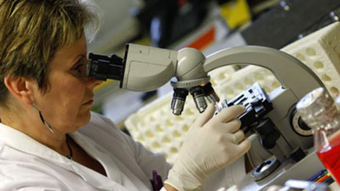 A generic image of a technician checking a test tube through a microscope. Photo by REUTERS.