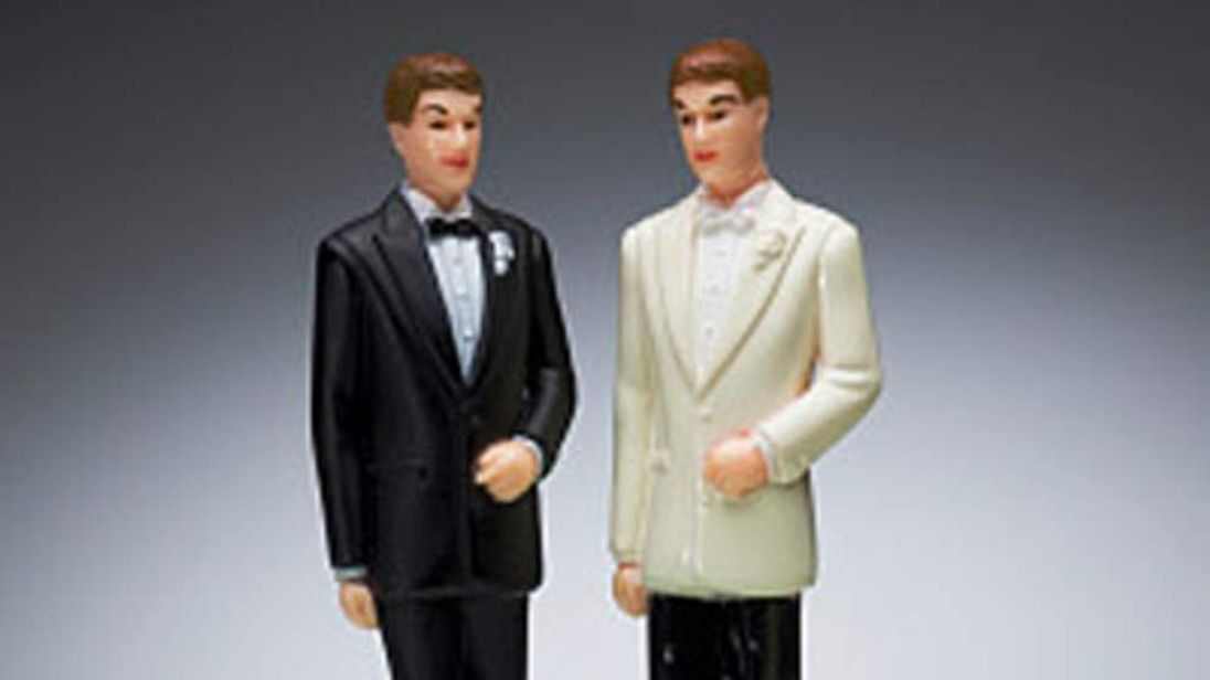 Gay marriage cake figures