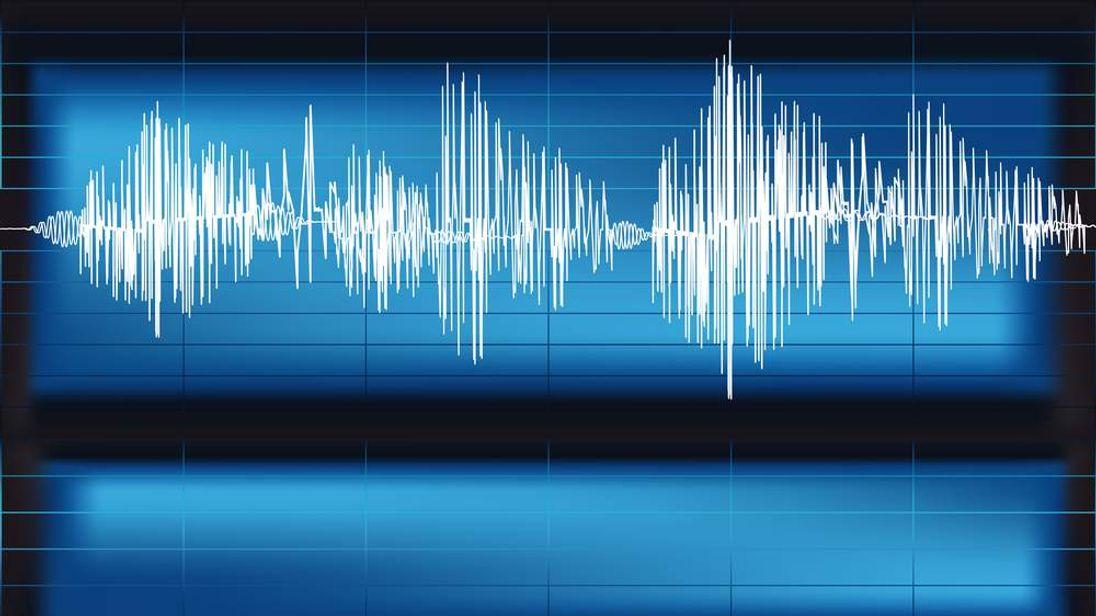 voice pattern