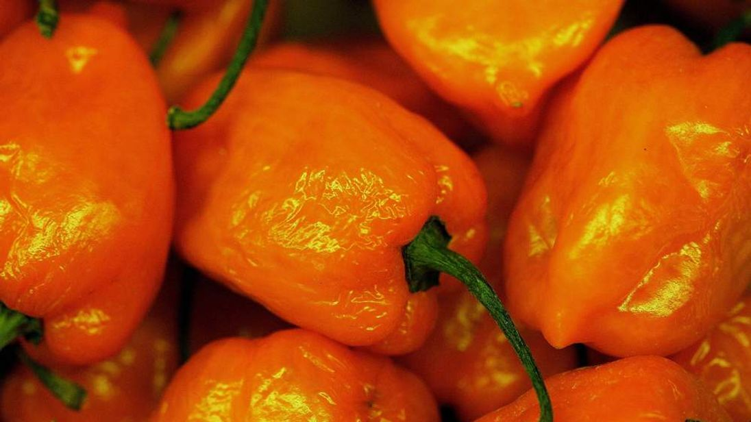 Ingredient In Chilli Peppers Shows Promise In Cancer Research