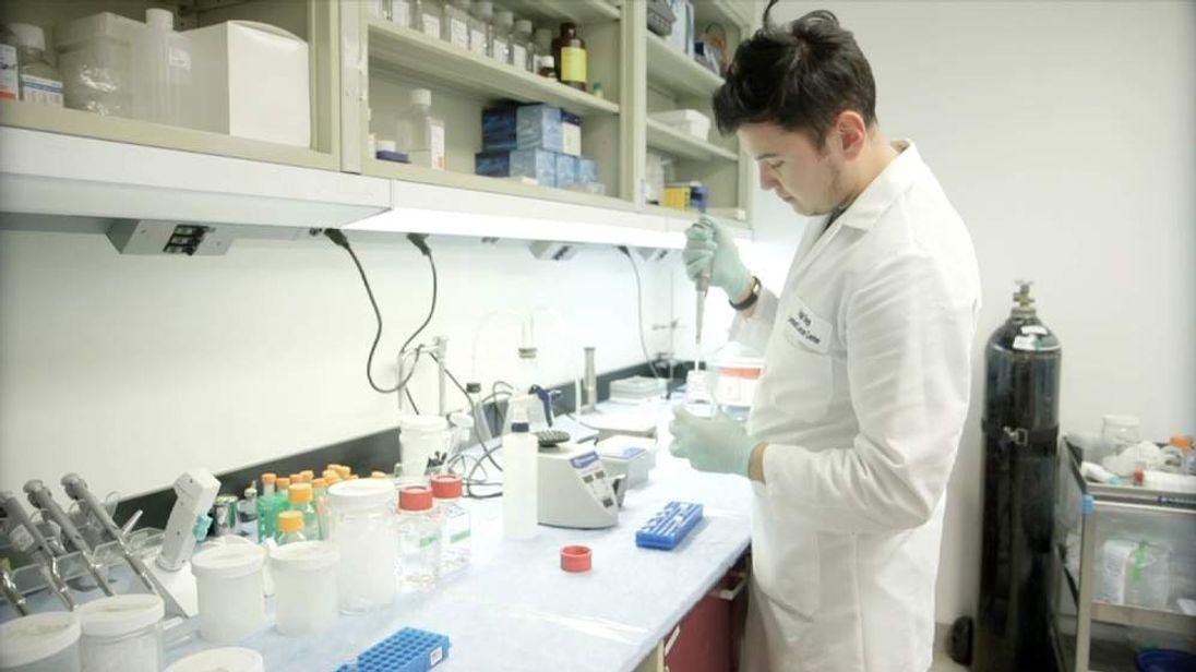 Scientist investigating dementia