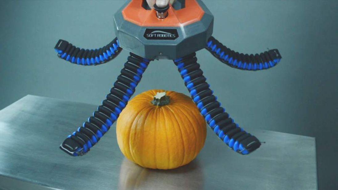 Pic: Soft Robotics Inc.