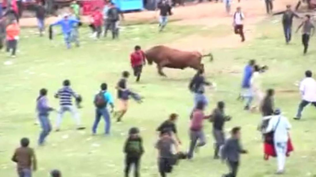 eight people hurt during Peru bull running festival