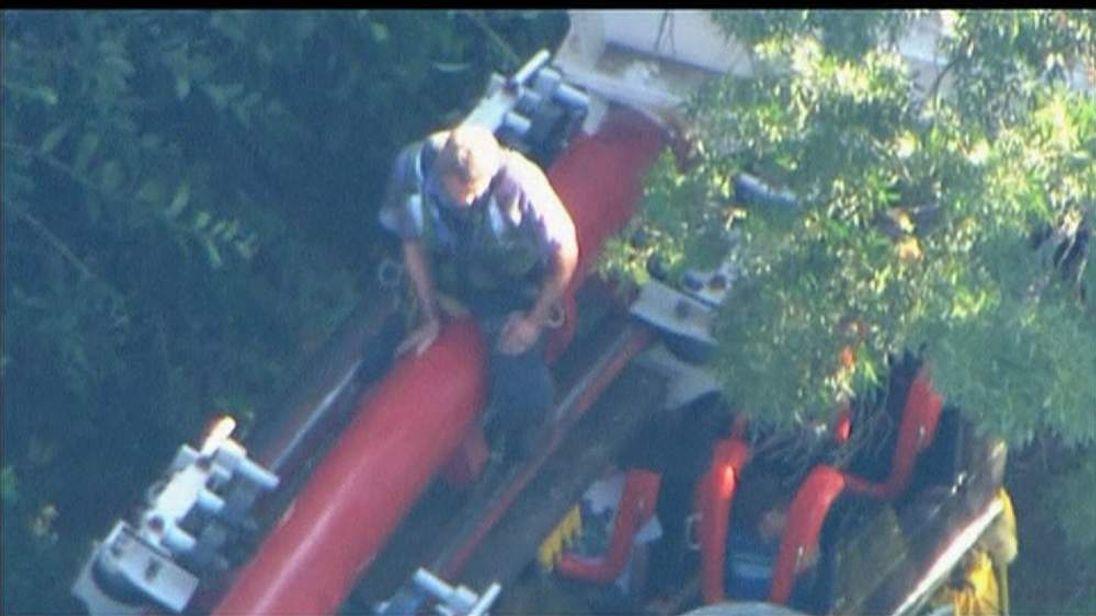 Ninja Roller Coaster Hit By Tree.