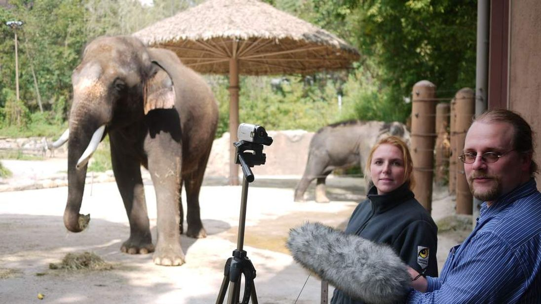 Koshik the elephant with Angela Stoeger and Daniel Mietchen