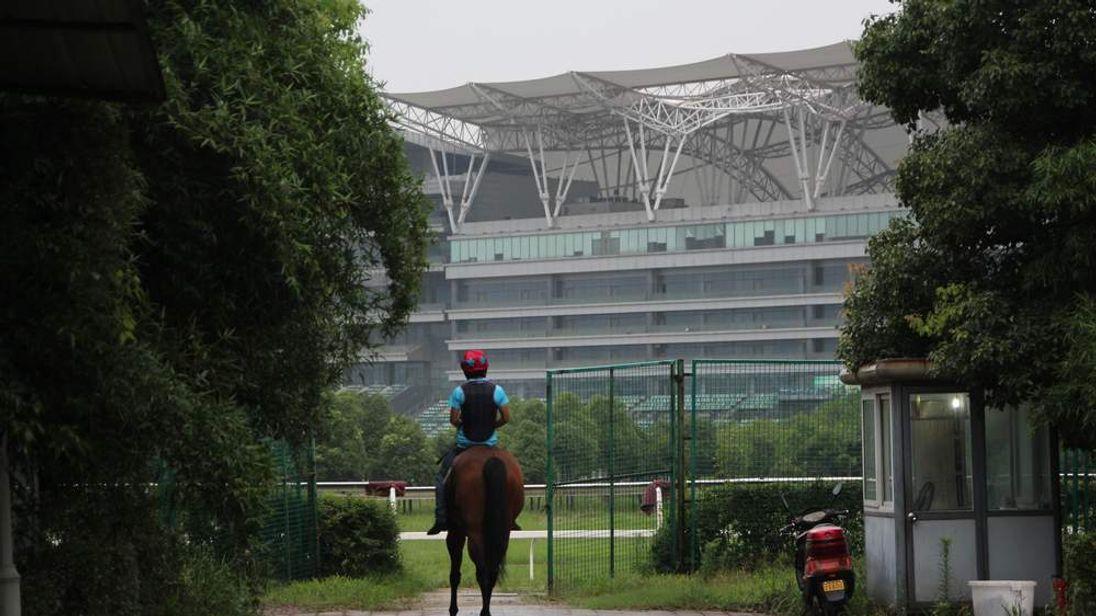 China horse racing