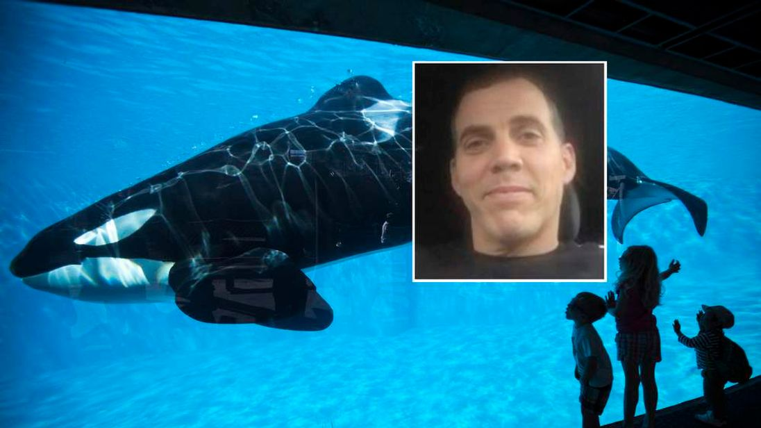 Steve-O has campaigned about the shows at SeaWorld