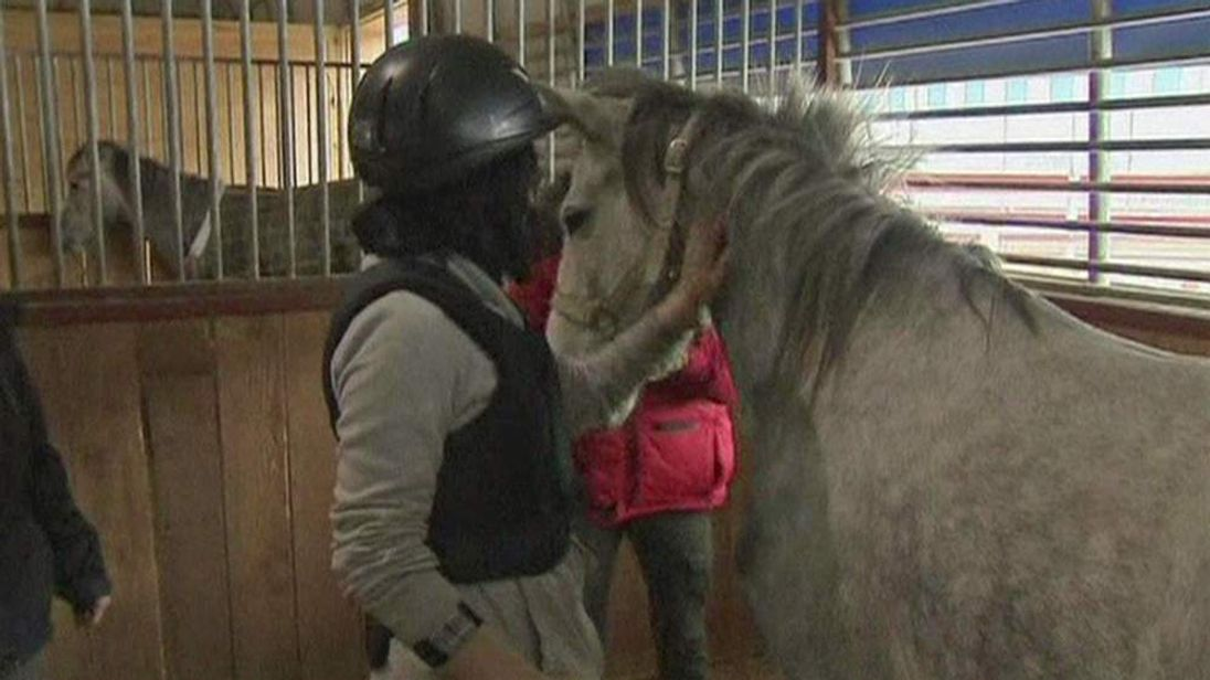 Ms Kim strokes a horse at her therapy session