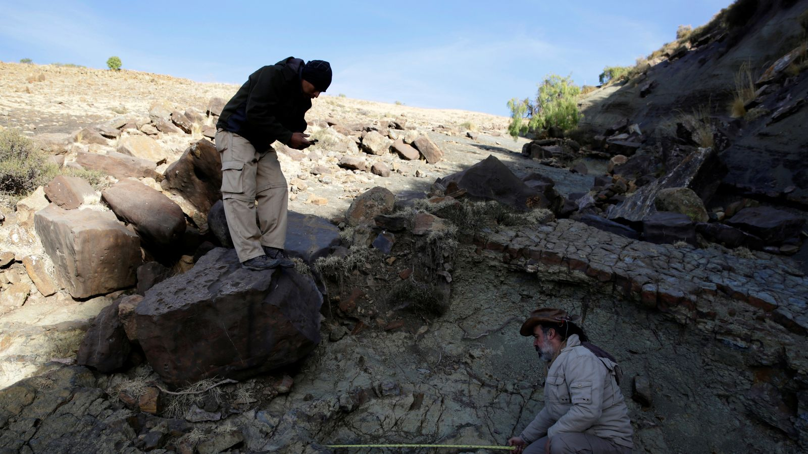 Whats Wrong With News >> Giant Dinosaur Footprint Found In Bolivia
