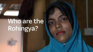 Rohingya screengrab from VJU explainer video